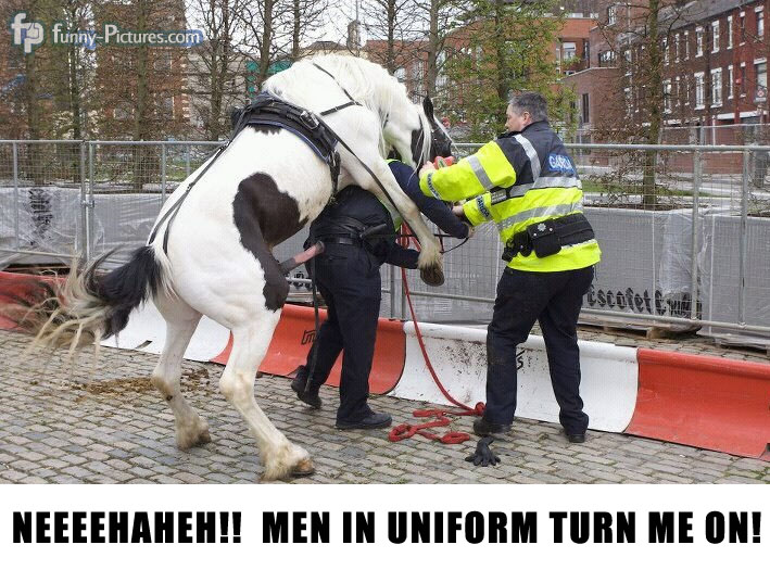 horse-jumps-police