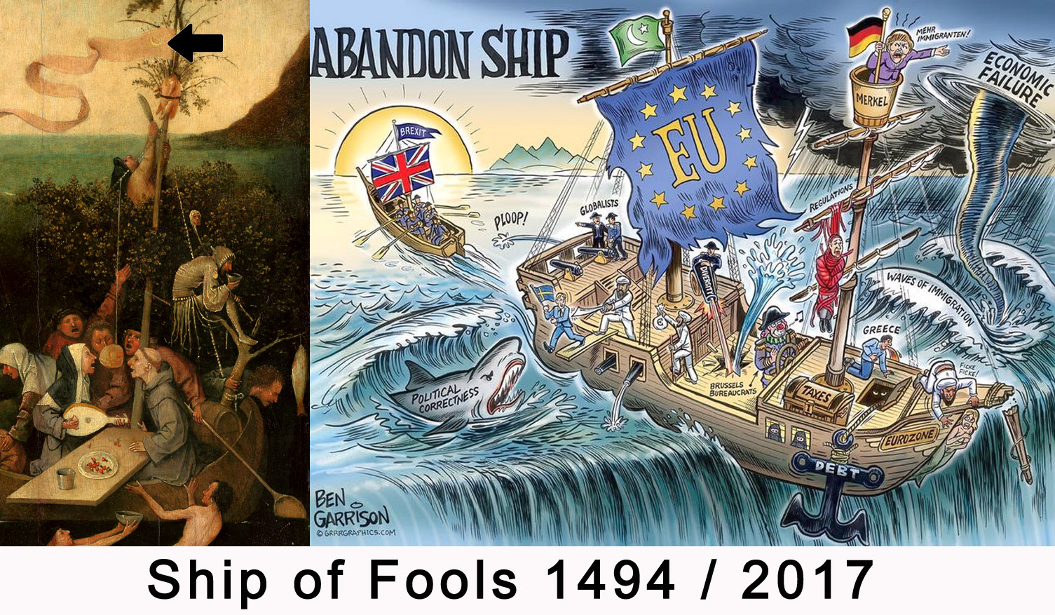 Schip of fools